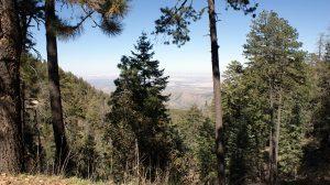 Chiricahua Mountains Lodging